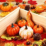 Herbst Deko Set, Kesote 120 PCS Kürbis Künstlich Ahornblatt Thanksgiving Tischdeko Erntedankfest Halloween Dekoration Tannenzapfen Eicheln - 5