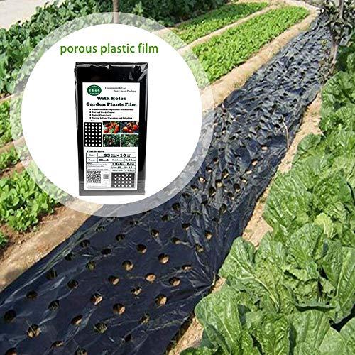 smileyshy Garten Pe Folie, Gartenpflanze Schwarz Folie Landwirtschaftliche Pflanze Kunststoff Folie Perforierte PE Folie Folie (95 cm 10 Mt 5 Löcher 0,03mm)