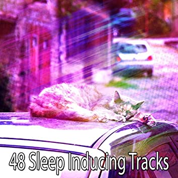 48 Sleep Inducing Tracks