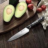PAUDIN Damast Messer Allzweckmesser 13cm - scharfe Japanisches AU10 Küchenmesser mit ergonomischem Micarta-Griff - 3