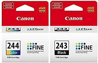 CANON PG-243 Black + CL-244 Color Ink Cartridge Bulk