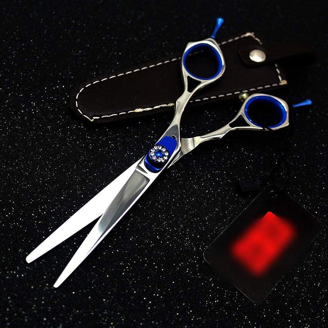 応答いつでもカリキュラムカットハサミ ヘアスタイリングツール 6インチプロフェッショナル両面理髪はさみ、宝石用原石理髪プロフェッショナルはさみ ヘアカットシザー (色 : 青)