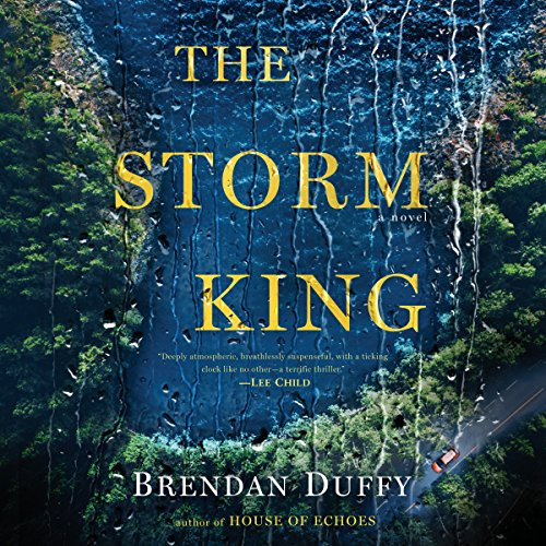 The Storm King audiobook cover art