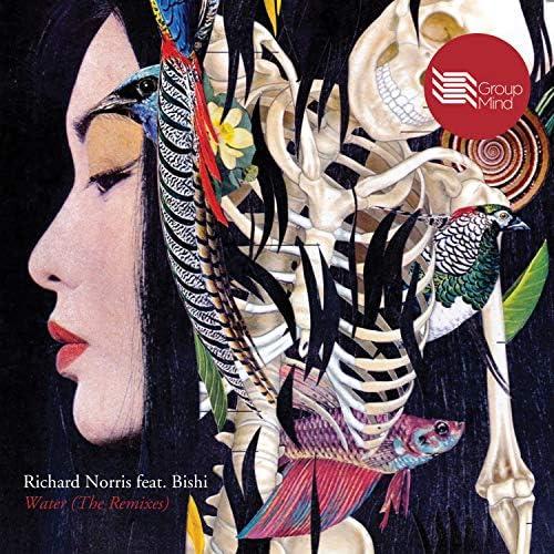 Richard Norris feat. Bishi Bhattacharya