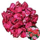 tooget - petali di rosa rossa naturale essiccati, fiori secchi all'ingrosso, ideali come decorazione per feste di nozze, bagno, bagnoschiuma, bagnoschiuma, tè, potpourri, artigianato, 56,7 g