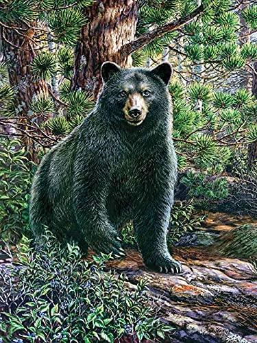 Xykhlj Pintura por números Animal Oso Negro del Bosque Profundo Pintura Cocina Sala de Estar Mural Regalo Sin Marco