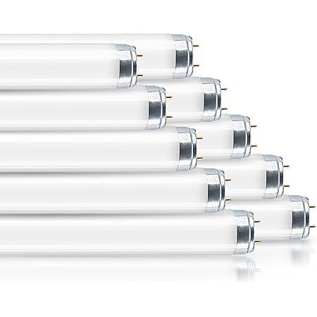 Osram 4052899306998 Ampoule halogènes/Basse consommation Verre 36 W G13 Blanc 10 Unités