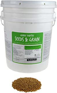 Soft White Wheat - Organic - 35 Lbs. Resealable Bucket - Handy Pantry Brand - Perfect for Food Storage, Flour, Baking, Sprouting & More