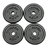 PROIRON Pesas de Disco 4 x 2,5 kg Hierro Fundido Discos de Pesa para mancuerna musculación