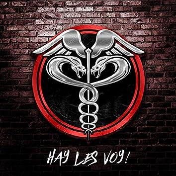 Hay Les Voy!