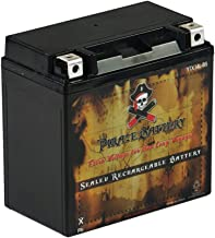 Replacement YTX14L-BS Powersport Battery- Replaces PTX14L-BS, ATX14LBS, HDX14L, ETX14L- Sealed AGM Battery- Pirate Battery