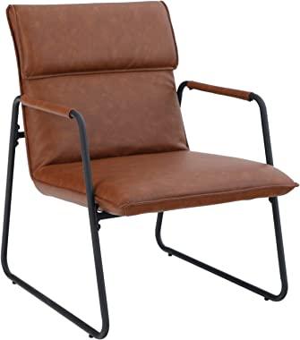 ALPHA HOME Living Room Accent Chair Sofa Chair Lounge Chair with Metal Leg for Home Office Study Living Room Vanity Bedroom,Brown