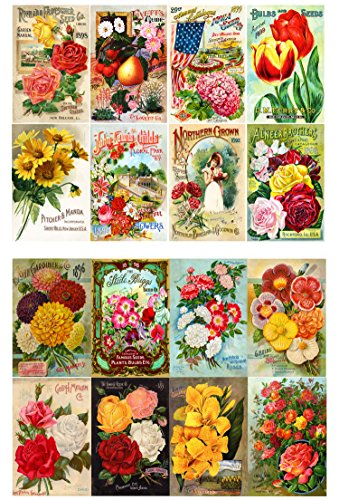 Decoupage Paper Pack (10sheets A4 / 8x12) Flowers Roses Garden Wildflowers FLONZ Vintage Paper