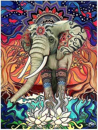 Pepkgk Colorido Animal Elefante DIY 5D Diamante Pintura por Adulto y niño Kit de numeración Completo Diamante Cristal Diamante Bordado Imagen decoración del hogar Arte manualida(Cuadrado 50x60cm)