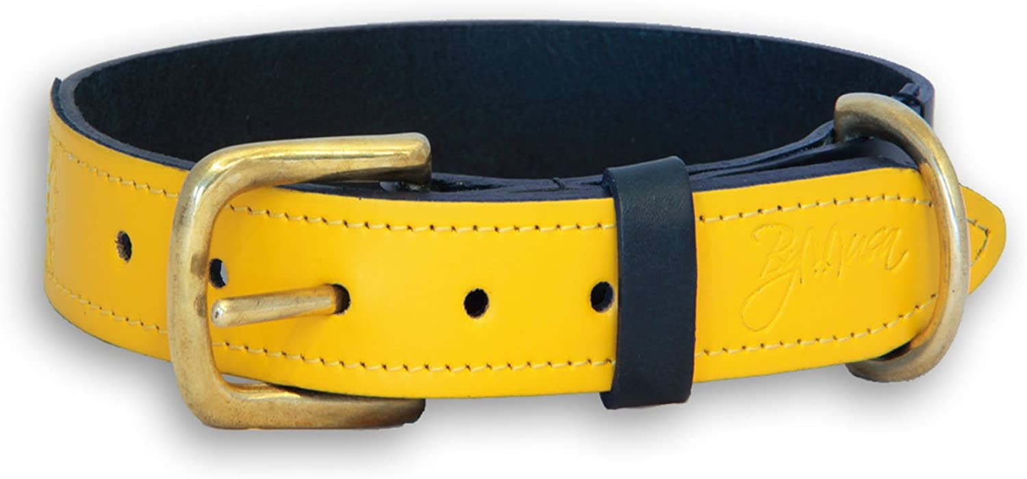 ByMusa Coco Collar, Small, Yellow