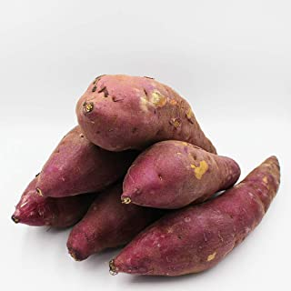 柿の木坂マルシェ 鹿児島県産 2019年産新物 熟成40日以上の思わず笑顔になる甘さの紅はるか MLサイズ混3kg