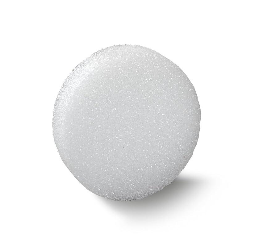 FloraCraft Styrofoam Disc 1.1 Inch x 5.8 Inch White