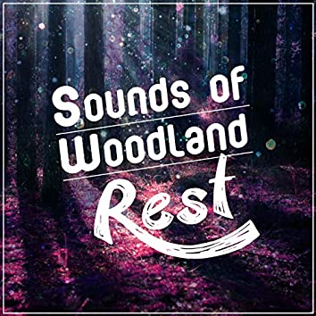 Sounds of Woodland Rest