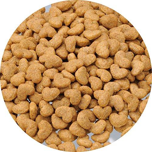 ビューティープロドッグフードドッグダイエット1歳からチキン2.3kg