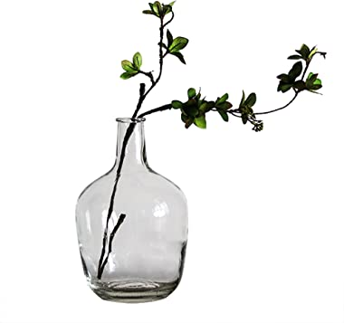 BUICCE Handbrown Transparent Glass Vases for Decor Large Bubble Vintage Floor Vase Clear for Branches Faux Artificial Flowers