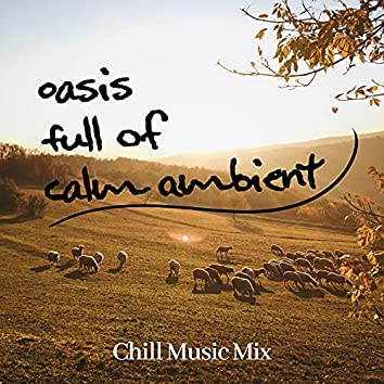 Oasis Full of Calm Ambient Chill Music Mix