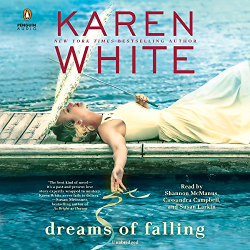 Dreams of Falling cover art