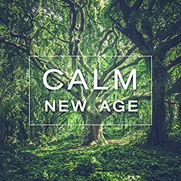 Calm New Age – Sounds of Nature for Deep Relaxation, Feel Deep Peace, New Age Music for Mindfulness, Soft Sounds