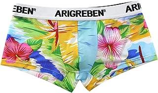 D DOLITY Men Sexy Sheer Mesh Net Boxer Briefs Boys Bikini Underpants Large Flower G-Strings Thongs Trunks Swimwear Super Breathable and Lightweight