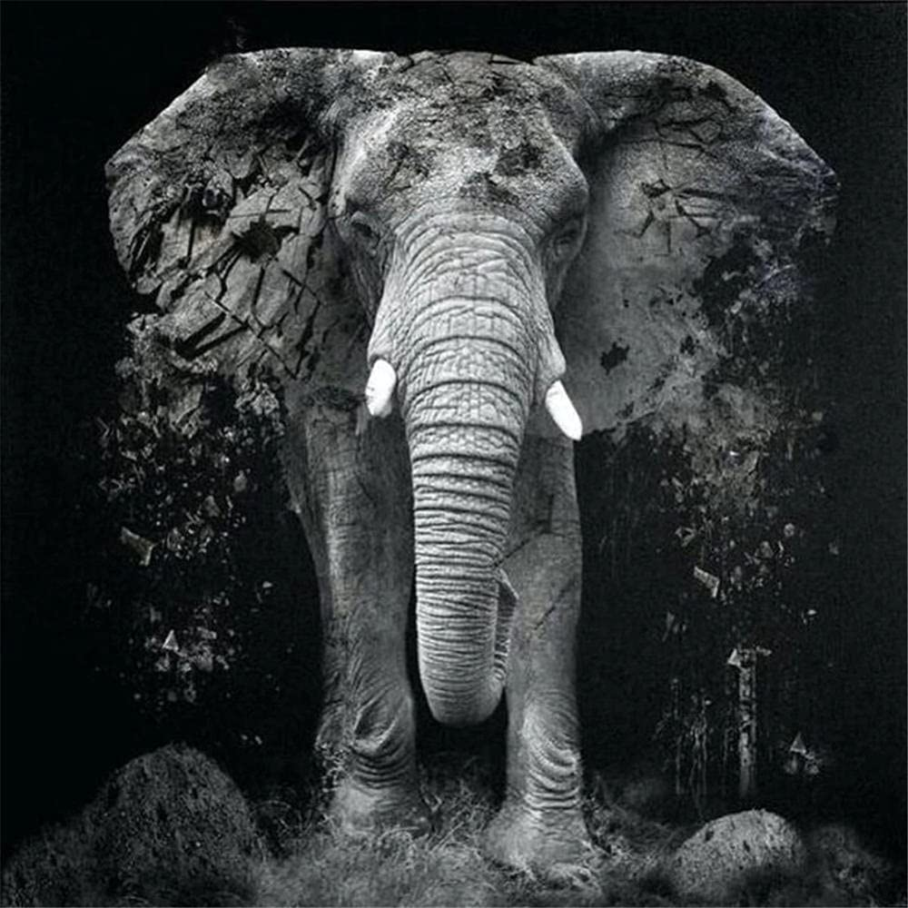 Max 44% OFF 5D Diamond Painting Kits Max 57% OFF for Adults,Elephant Dri Round Full