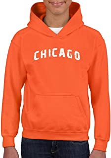 Boys Youth Kids ARTIX Chicago Illinois Distress Windy State Hoodie For Girls