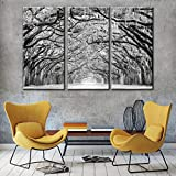 Black and white Winter Large Tree Photography Print,Abstract Canvas Artwork,Stretched and Framed,The path of Live Oak trees are draped with moss Landscape Canvas Wall Art Ready to Hang(40''x60'')