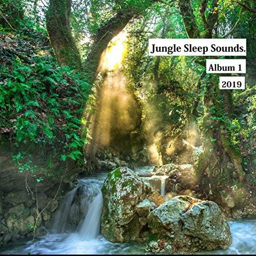 Jungle Sleep Sounds