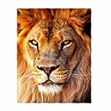 QH Lion Printing Velvet Plush Throw Blanket Comfort Design Home Decoration Fleece Blanket Perfect for Couch Sofa or Travelling 58' x 80' (2)
