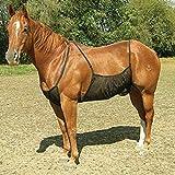 Centeraly Funda protectora para el abdomen del caballo, alfombra para exteriores, cómoda, ajustable, antiarañazos, antimosquitos, malla elástica, transpirable