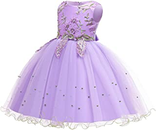 Zhhlaixing Flower Lace Christmas Dresses Elegant Princess Dresses Big/Little Girl Birthday Tulle Dress Appliques Tulle Wedding Party Dresses for Communion Party 2-14T