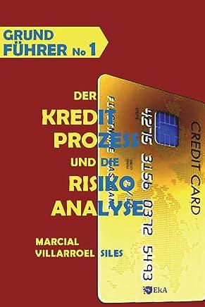 GRUNDF�HRER Der Kreditprozess und die Risikoanalyse (Analyse des Risikos im Kredit, Band 1) : B�cher