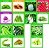 Krisah® (1985+) 46 Varieties of Vegetables Seeds Combo with Starting your own Garden Guide #2