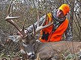 Thumper - Missouri Booner