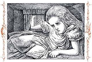 كان السيد جون تينيل (1820 1914) رسام إنجليزي يتذكر الأفضل لعمله في لويس كارولز إليكس مغامرات في بلاد العجائب ومن خلال ملصق...