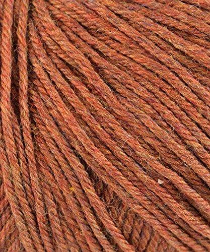 Cascade Yarns - Cascade 220 Yarn Superwash Yarn #1920 Pumpkin Spice by Cascade Yarns