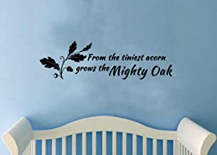ValueVinylArt from The Tiniest Acorn Grows The Mighty Oak -Nursery Wall Decal (30