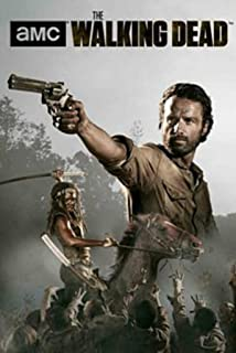 The Walking Dead Season 4 Rick and Michonne Poster 24 x 36in