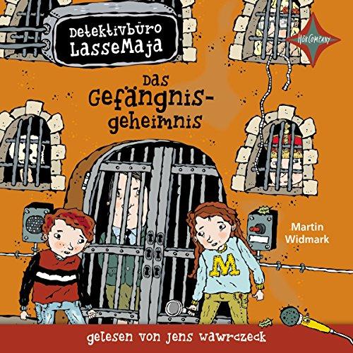 Das Gefängnisgeheimnis Titelbild