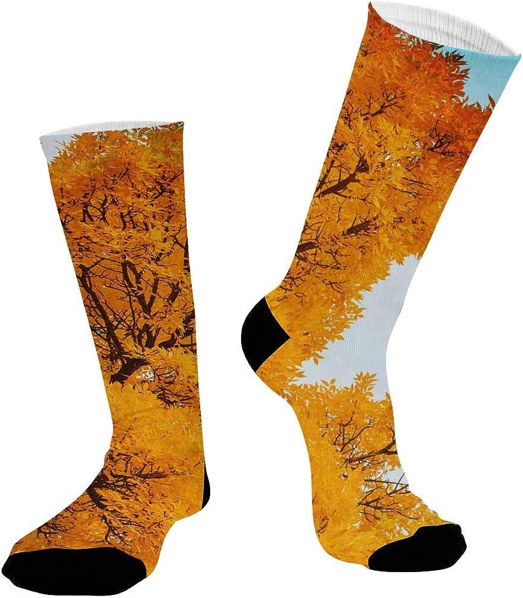 INTERESTPRINT Sublimated Crew Socks, Athletic Dress Socks Colorful Foliage Autumn
