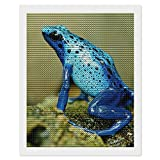 Diy - Kit de pintura de diamante 5D para decoración de casa, 40 x 50 cm, diseño de rana azul