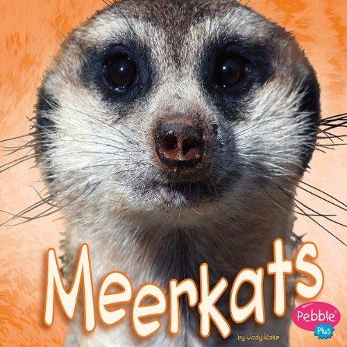 Meerkats cover art