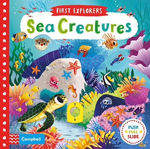 Sea Creatures (First Explorers, Band 2)