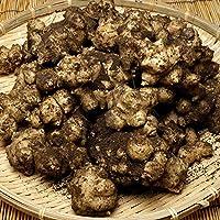 菊芋 土付き 1kg 有機JAS (青森県 自然食ねっと青森株式会社) 産地直送 ふるさと21