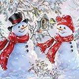 20 servilletas de muñeco de nieve en casa de pájaros como decoración de mesa para invierno y Navidad, 33 x 33 cm