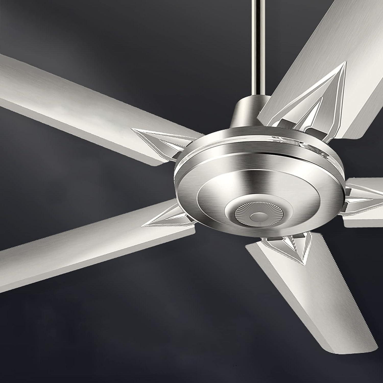 WWWRL 1.4m Ventilador De Techo Industrial Grande, Ventilador Techo De Acero Inoxidable para El Hogar, Núcleo De Cobre Puro, Viento Fuerte, Ventilador Industrial De 5 Velocidades Y 100 W
